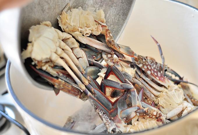 crabsoup05
