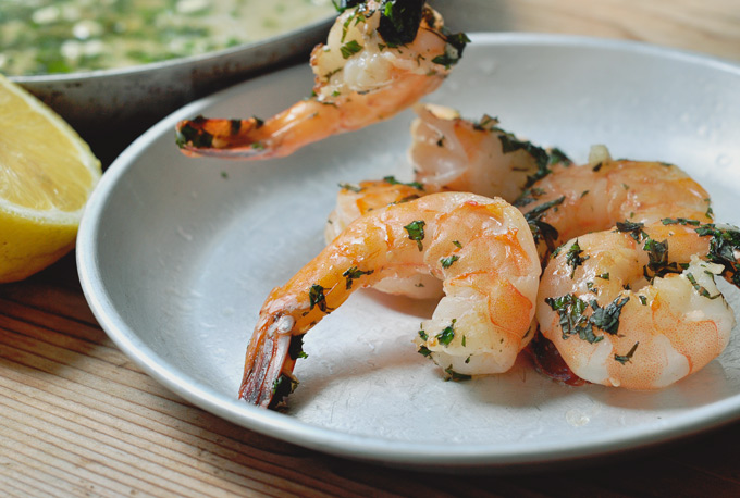 martini_shrimps_10