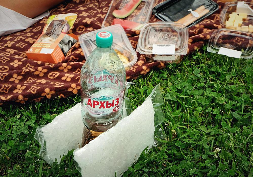russia_33_picnic